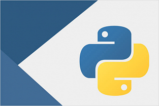 Как использовать API AnyLogic Cloud на Python