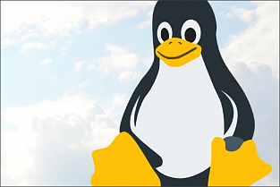 Linux-версия Private Cloud Lite